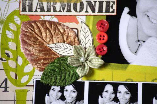 Zoomharmonie